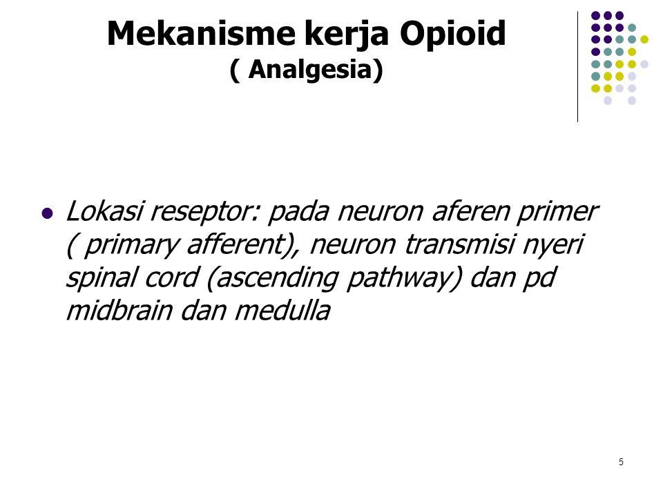 Mekanisme kerja Opioid ( Analgesia) Lokasi reseptor: pada neuron aferen primer ( primary afferent), neuron transmisi nyeri spinal cord (ascending path