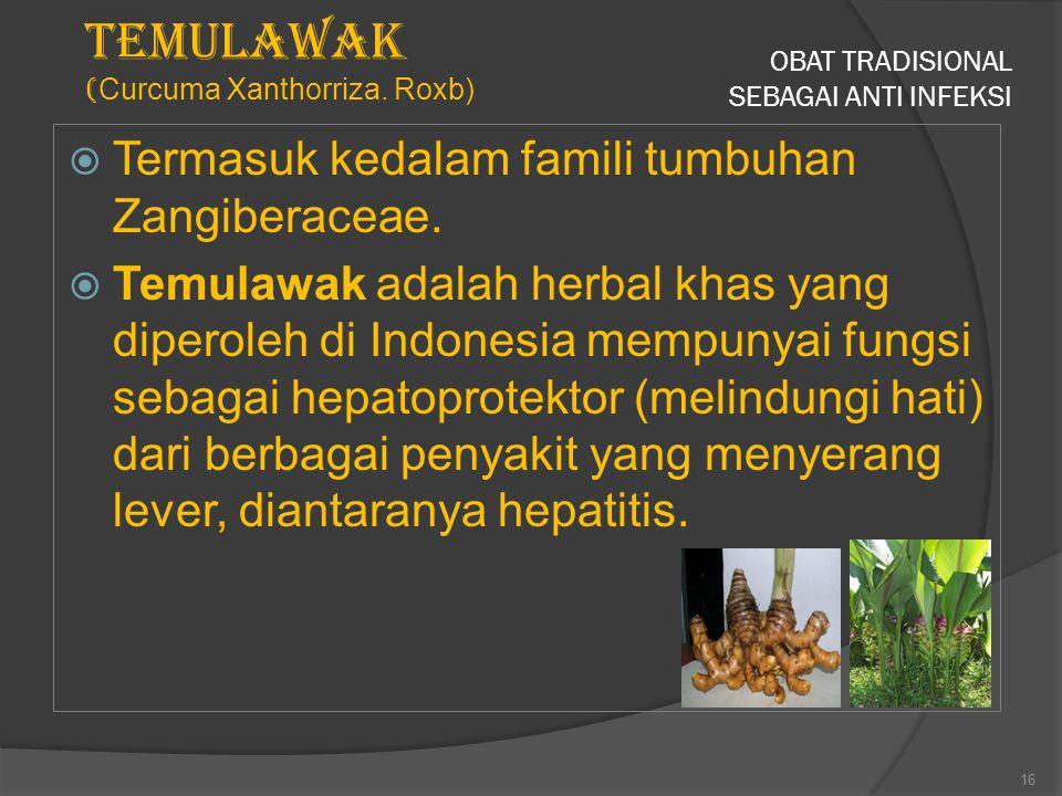 OBAT TRADISIONAL SEBAGAI ANTI INFEKSI  Termasuk kedalam famili tumbuhan Zangiberaceae.  Temulawak adalah herbal khas yang diperoleh di Indonesia mem
