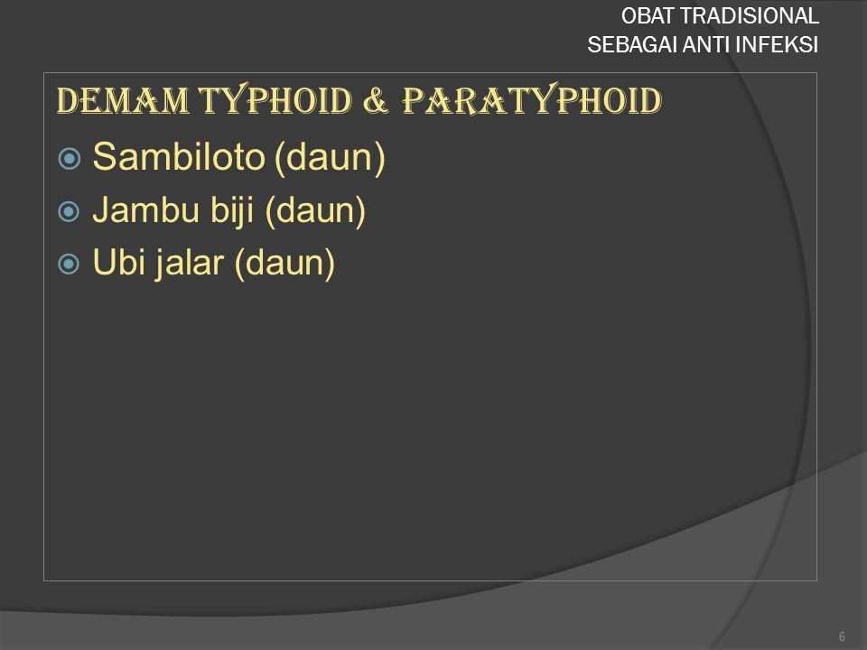 Demam typhoid & paratyphoid  Sambiloto (daun)  Jambu biji (daun)  Ubi jalar (daun) OBAT TRADISIONAL SEBAGAI ANTI INFEKSI 6