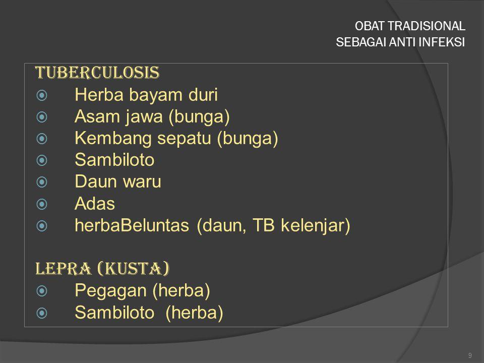 Kandungan :  Akar: Morindin, morindan, aligarin-d-methylether, soranjidiol  Buah : alkaloid (triterpenoid, proxeronine), polysacharide (damnacanthal), sterol, coumarin, scopoletin, ursolic acid, linoleic acid, caproic acid, caprilic acid, alizarin, acubin, iridoic glycoside, L-asperuloside, vit C, vit A, caroten  Daun: zat kapur, zat besi, karoten, ascorbin, alkaloid triterpenoid, polysacharide, b-sitosterol, anthraquinon (nordamnacanthal, morindone, rubiadin, rubiadin-1- methylether,  Glikosid anthraquinone pada buah, bunga, kulit kayu, dan akar 20 MENGKUDU (Morinda Citrifolia)