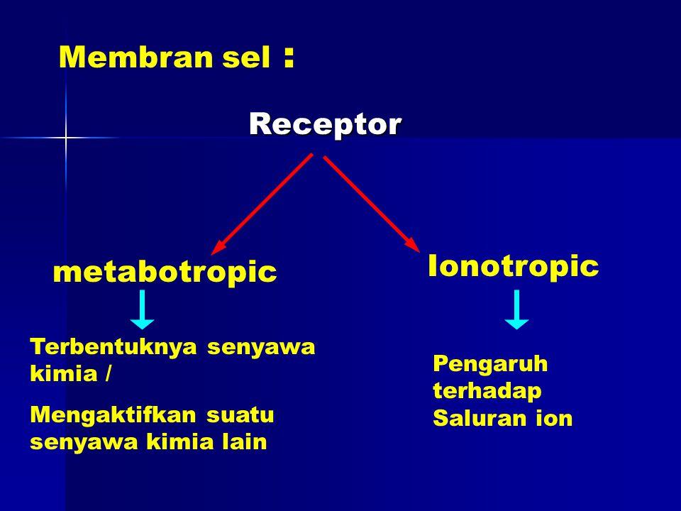 Membran sel : Receptor Receptor metabotropic Ionotropic Terbentuknya senyawa kimia / Mengaktifkan suatu senyawa kimia lain Pengaruh terhadap Saluran ion