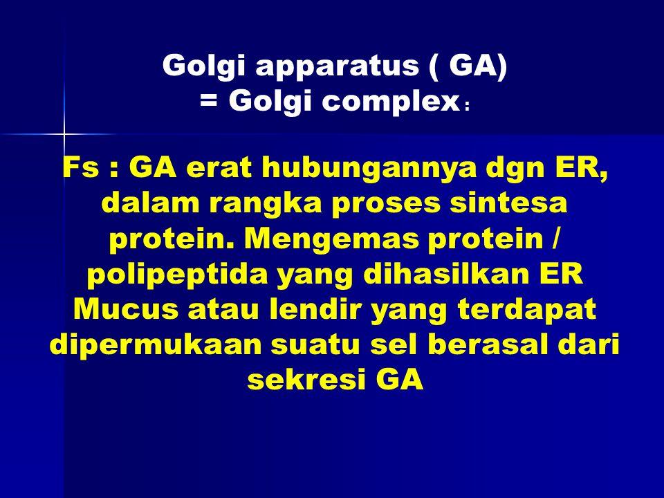 Golgi apparatus ( GA) = Golgi complex : Fs : GA erat hubungannya dgn ER, dalam rangka proses sintesa protein.