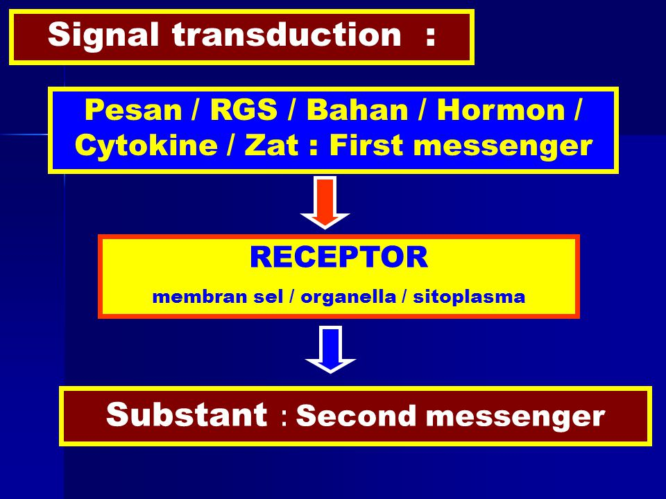 Signal transduction : Pesan / RGS / Bahan / Hormon / Cytokine / Zat : First messenger RECEPTOR membran sel / organella / sitoplasma Substant : Second messenger