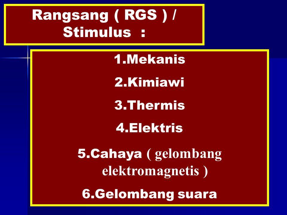 Rangsang ( RGS ) / Stimulus : 1.Mekanis 2.Kimiawi 3.Thermis 4.Elektris 5.Cahaya ( gelombang elektromagnetis ) 6.Gelombang suara