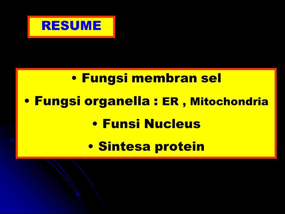 RESUME Fungsi membran sel Fungsi organella : ER, Mitochondria Funsi Nucleus Sintesa protein