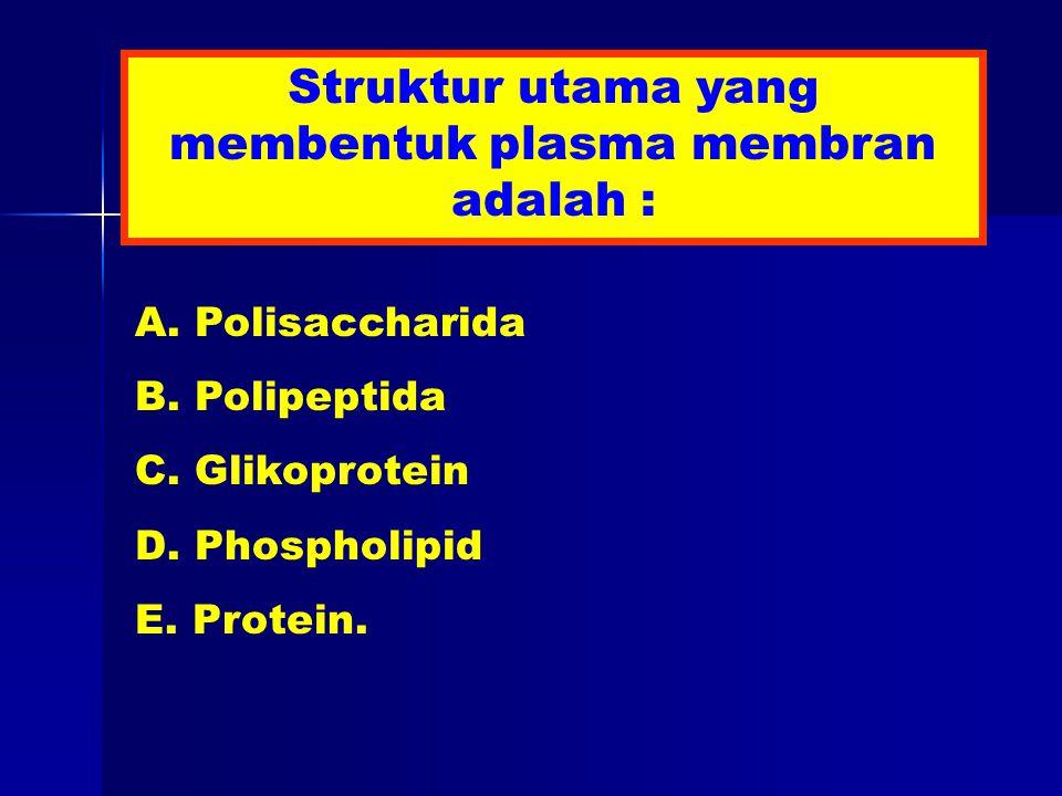 Struktur utama yang membentuk plasma membran adalah : A.