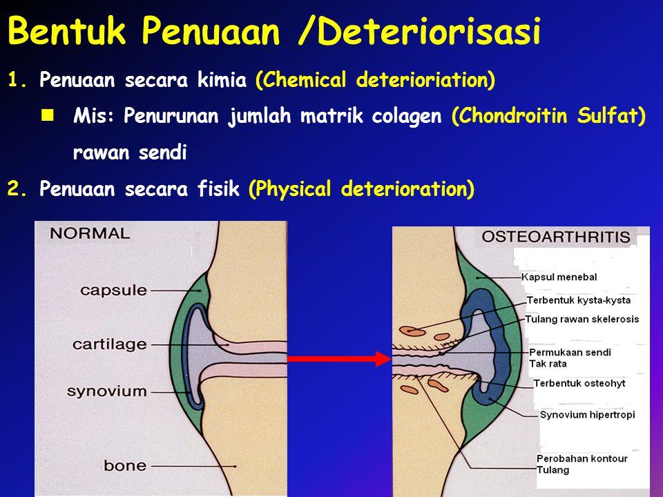 Bentuk Penuaan /Deteriorisasi 1.Penuaan secara kimia (Chemical deterioriation) Mis: Penurunan jumlah matrik colagen (Chondroitin Sulfat) rawan sendi 2