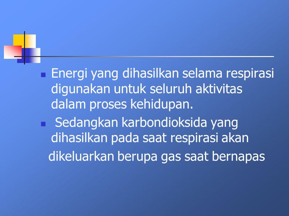 Energi yang dihasilkan selama respirasi digunakan untuk seluruh aktivitas dalam proses kehidupan. Sedangkan karbondioksida yang dihasilkan pada saat r