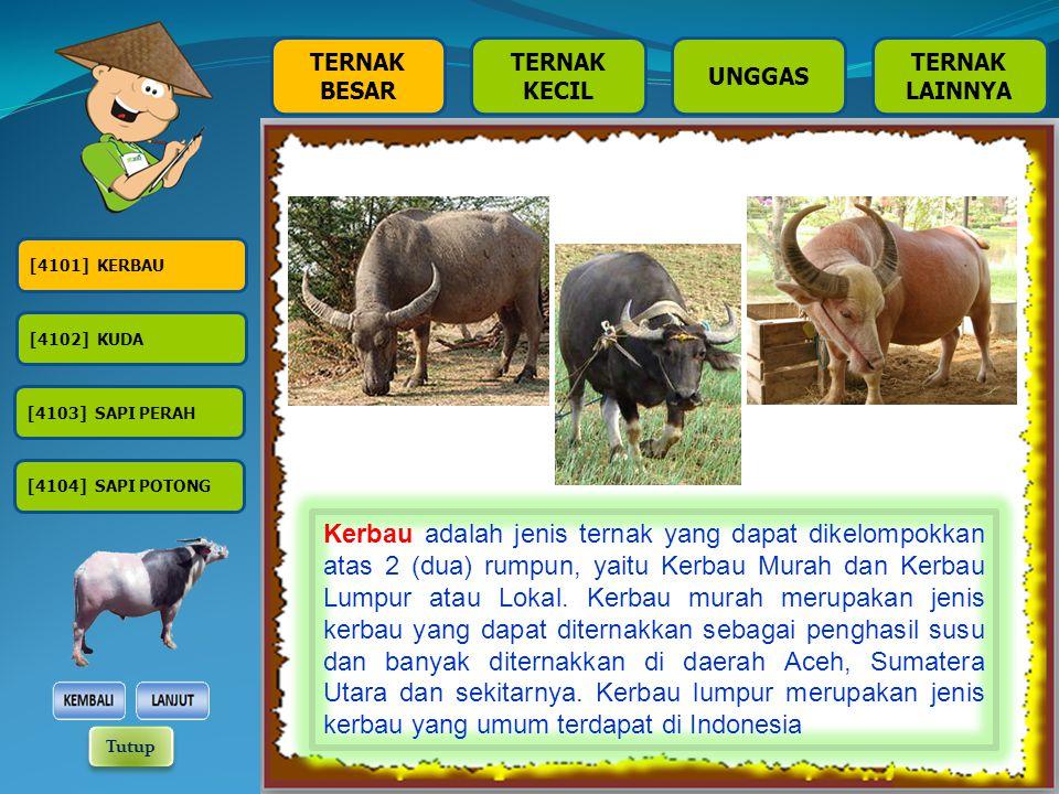 TERNAK BESAR TERNAK KECIL TERNAK LAINNYA UNGGAS [4301] AYAM KAMPUNG [4302] AYAM PEDAGING [4303] AYAM PETELUR [4304] ITIK [4305] ITIK MANILA Itik adalah jenis unggas air, yang meliputi semua jenis itik yang ada di Indonesia.