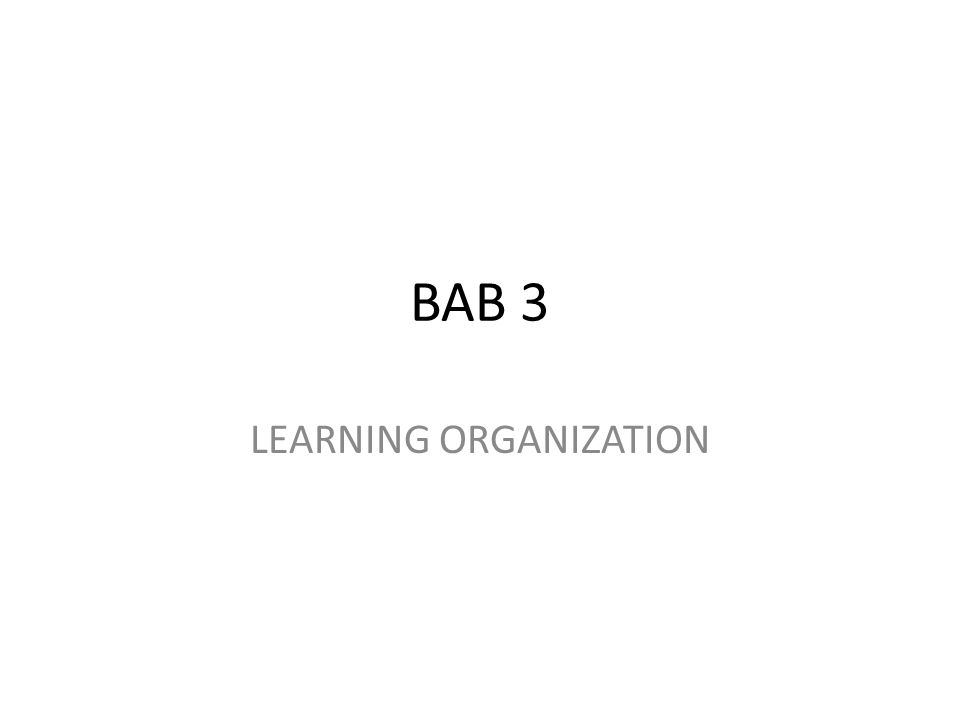 BAB 3 LEARNING ORGANIZATION