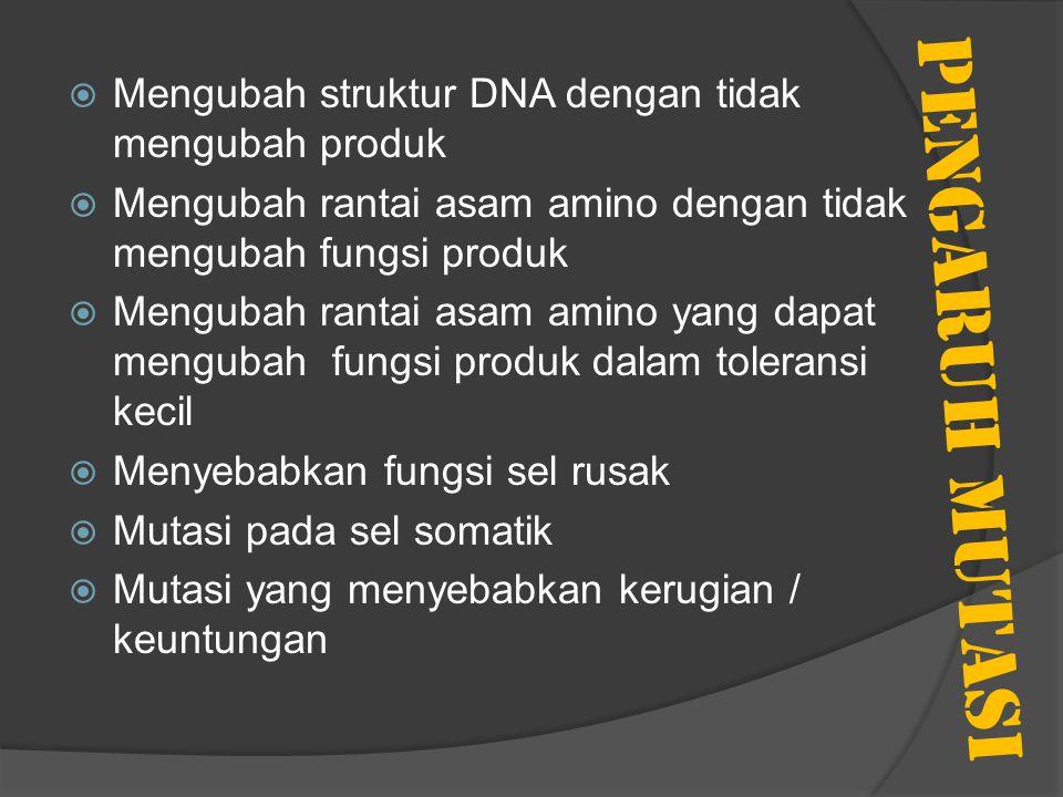 PENGARUH MUTASI  Mengubah struktur DNA dengan tidak mengubah produk  Mengubah rantai asam amino dengan tidak mengubah fungsi produk  Mengubah ranta