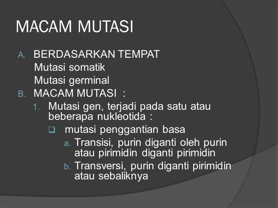 MACAM MUTASI A. BERDASARKAN TEMPAT Mutasi somatik Mutasi germinal B. MACAM MUTASI : 1. Mutasi gen, terjadi pada satu atau beberapa nukleotida :  muta