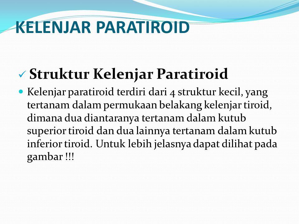 KELENJAR PARATIROID Struktur Kelenjar Paratiroid Kelenjar paratiroid terdiri dari 4 struktur kecil, yang tertanam dalam permukaan belakang kelenjar ti