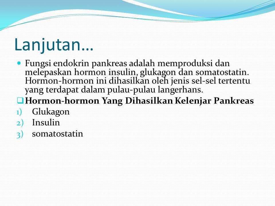 Lanjutan… Fungsi endokrin pankreas adalah memproduksi dan melepaskan hormon insulin, glukagon dan somatostatin. Hormon-hormon ini dihasilkan oleh jeni