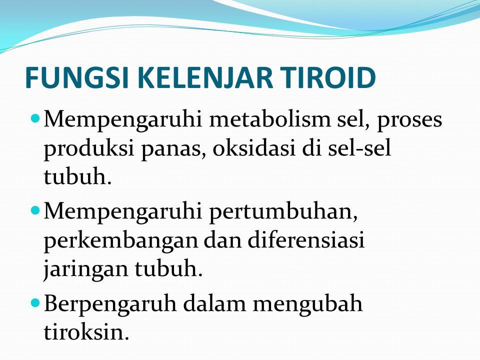 FUNGSI KELENJAR TIROID Mempengaruhi metabolism sel, proses produksi panas, oksidasi di sel-sel tubuh. Mempengaruhi pertumbuhan, perkembangan dan difer