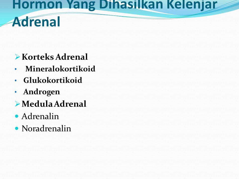 Hormon Yang Dihasilkan Kelenjar Adrenal  Korteks Adrenal Mineralokortikoid Glukokortikoid Androgen  Medula Adrenal Adrenalin Noradrenalin
