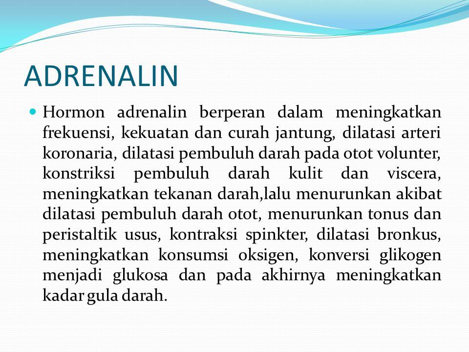 ADRENALIN Hormon adrenalin berperan dalam meningkatkan frekuensi, kekuatan dan curah jantung, dilatasi arteri koronaria, dilatasi pembuluh darah pada