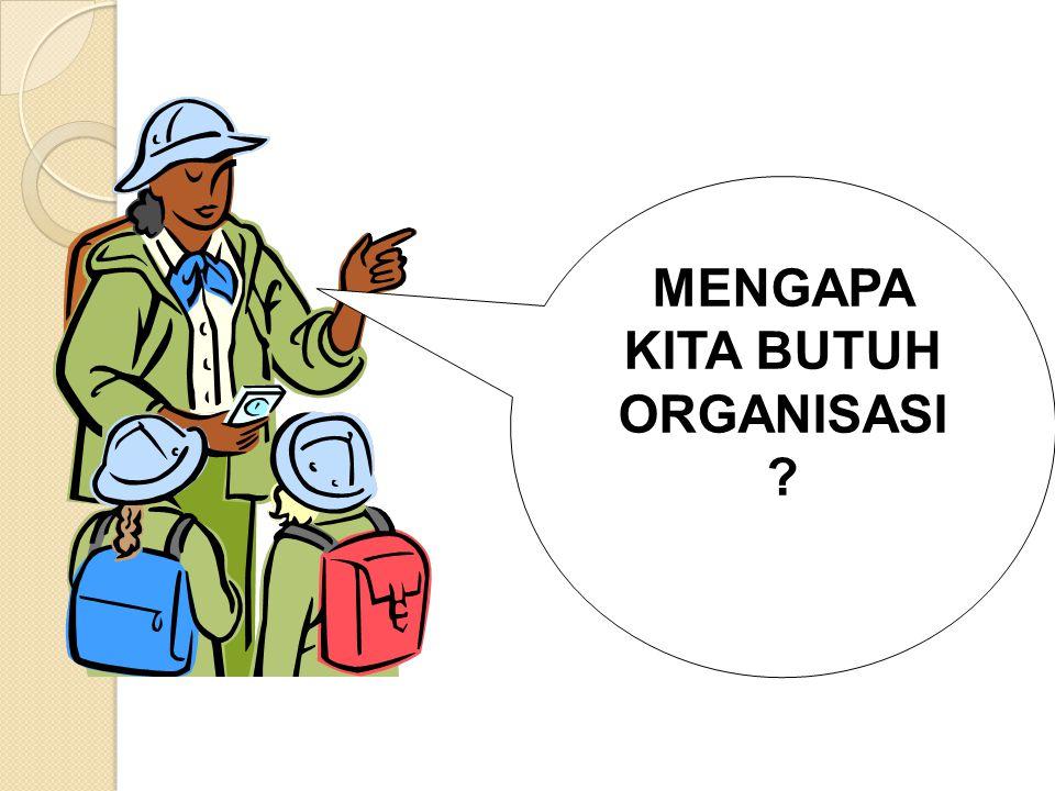 PERILAKU INDIVIDU Organisasi sebagai suatu sistem sosial, dimana didalamnya terdapat para individu yang bekerja sama untuk mencapai tujuan yang telah diepakati bersama.