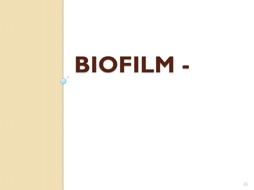 BIOFILM - 25