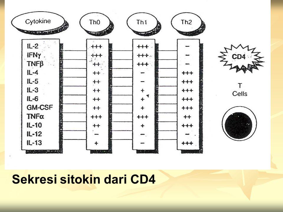 Sekresi sitokin dari CD4