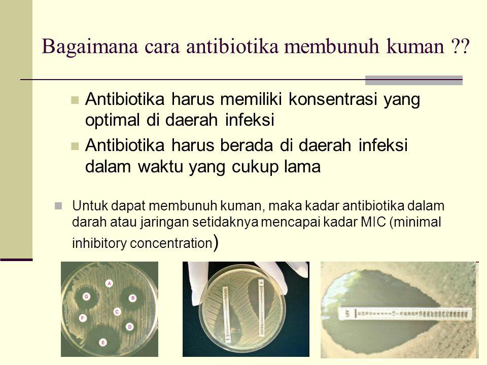 Farmakokinetik Antibiotika : Absorbsi
