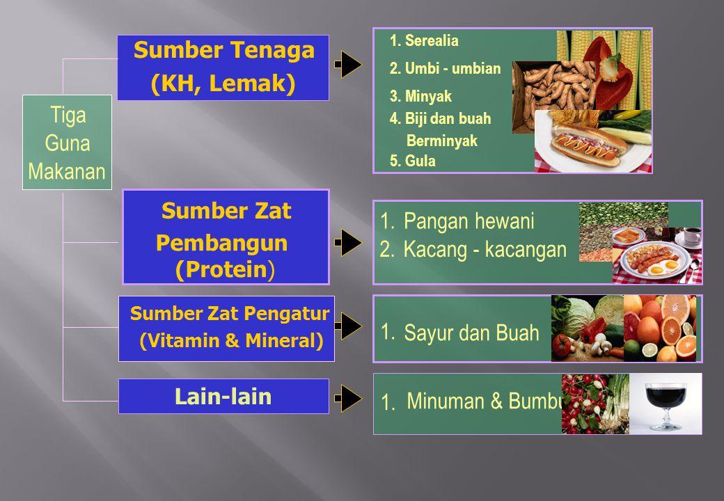 Tiga Guna Makanan 1.Serealia 2. Umbi - umbian 3. Minyak 4.
