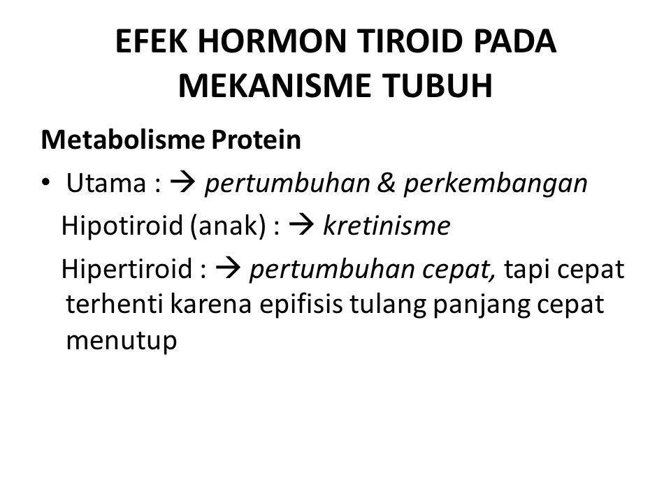 EFEK HORMON TIROID PADA MEKANISME TUBUH Metabolisme Protein Utama :  pertumbuhan & perkembangan Hipotiroid (anak) :  kretinisme Hipertiroid :  pert