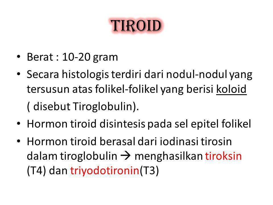 PENYAKIT TIROID 1.Hipertiroid (tirotoksikosis)  kelebihan hormon tiroid 2.Hipotiroid (miksedema)  kekurangan hormon tiroid 3.Goiter, pembesaran difus kelj tiroid  peningkatan TSH berkepanjangan 4.Nodul tiroid, pembesaran fokal sebagian kelj krn neoplasma jinak/ganas