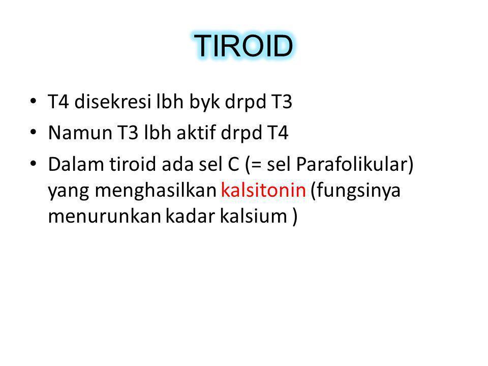 T4 disekresi lbh byk drpd T3 Namun T3 lbh aktif drpd T4 Dalam tiroid ada sel C (= sel Parafolikular) yang menghasilkan kalsitonin (fungsinya menurunka