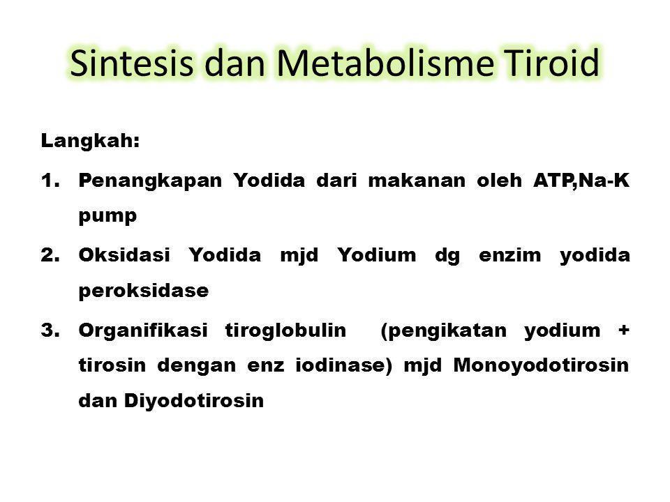 Langkah: 1.Penangkapan Yodida dari makanan oleh ATP,Na-K pump 2.Oksidasi Yodida mjd Yodium dg enzim yodida peroksidase 3.Organifikasi tiroglobulin (pe