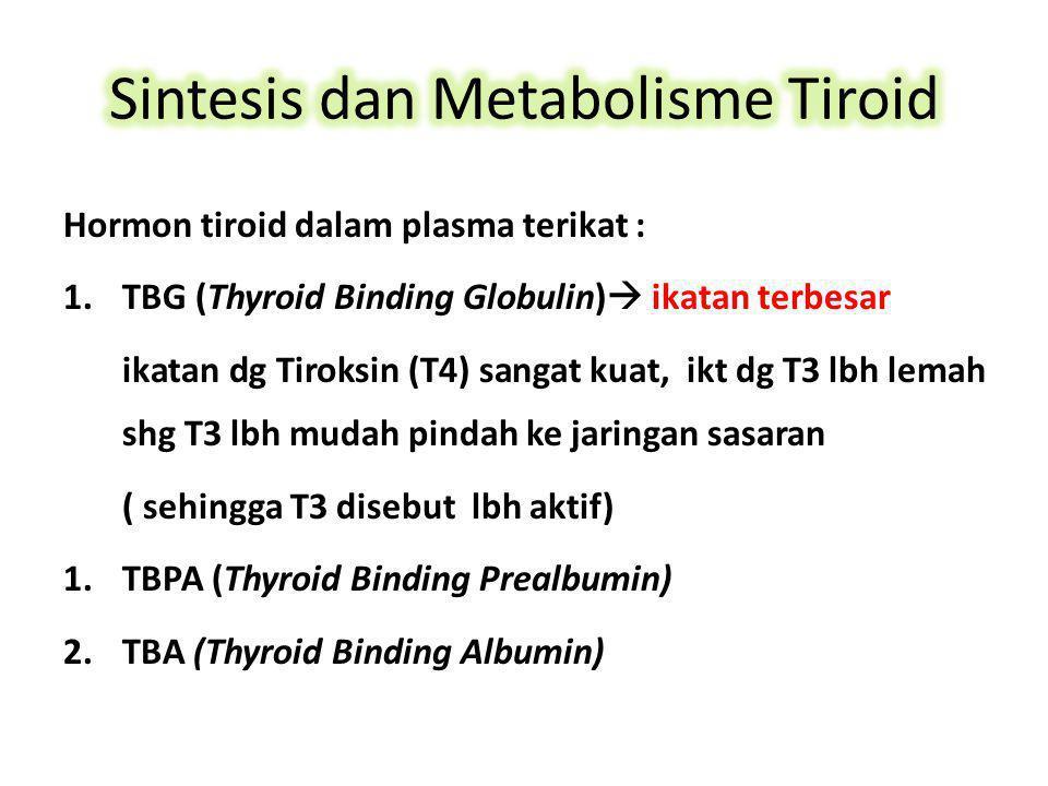 Hormon tiroid dalam plasma terikat : 1.TBG (Thyroid Binding Globulin)  ikatan terbesar ikatan dg Tiroksin (T4) sangat kuat, ikt dg T3 lbh lemah shg T