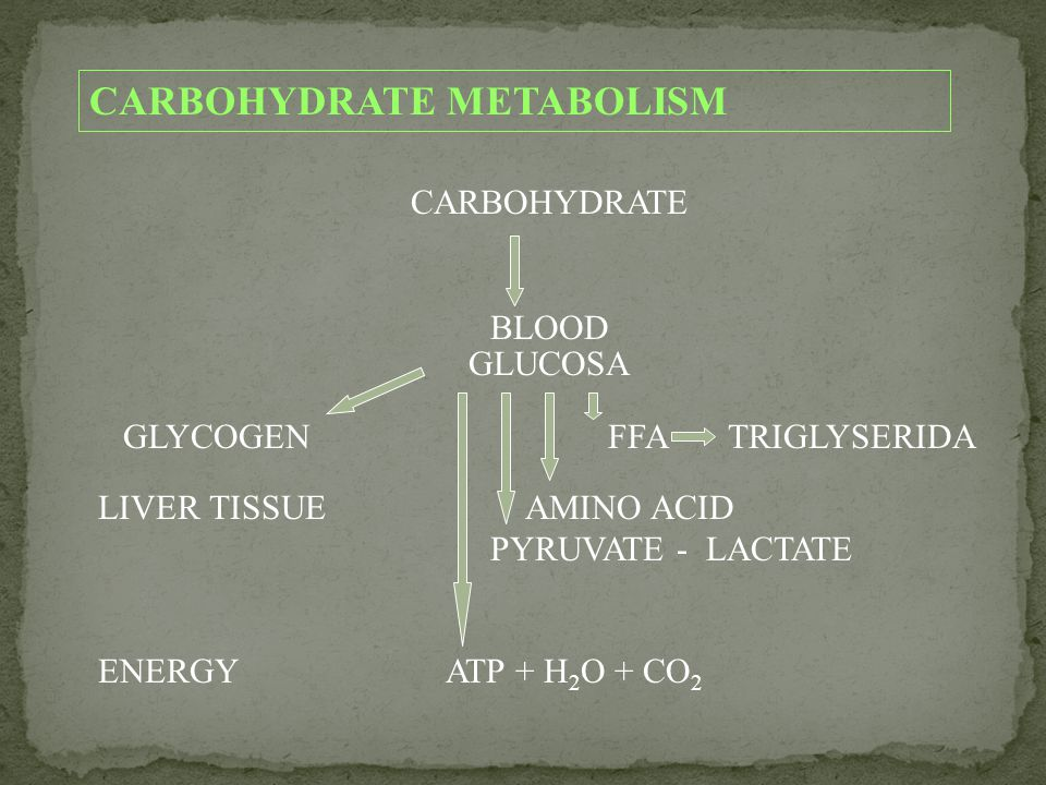 CARBOHYDRATE METABOLISM CARBOHYDRATE BLOOD GLUCOSA GLYCOGEN FFA TRIGLYSERIDA LIVER TISSUE AMINO ACID PYRUVATE - LACTATE ENERGY ATP + H 2 O + CO 2