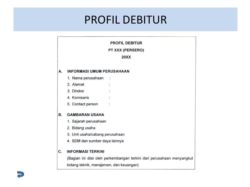 PROFIL DEBITUR