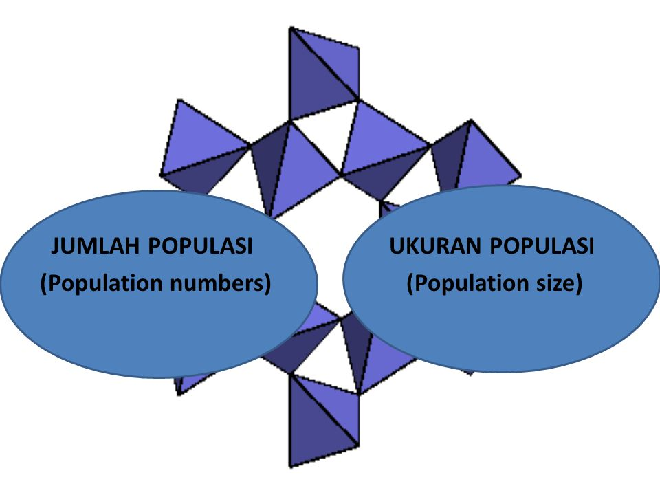 JUMLAH POPULASI (Population numbers) UKURAN POPULASI (Population size)