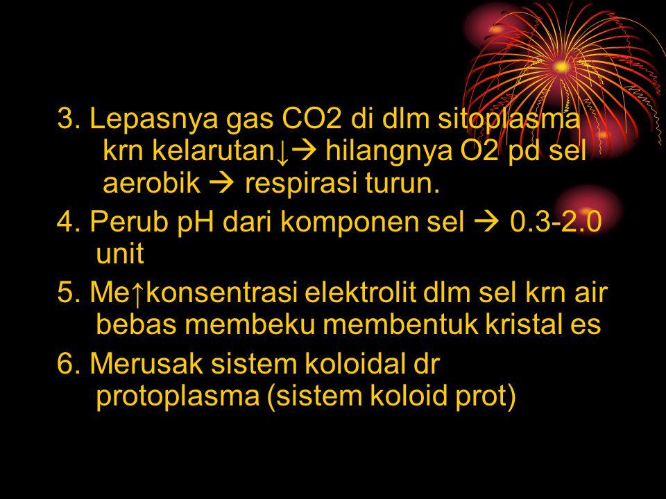 3. Lepasnya gas CO2 di dlm sitoplasma krn kelarutan↓  hilangnya O2 pd sel aerobik  respirasi turun. 4. Perub pH dari komponen sel  0.3-2.0 unit 5.