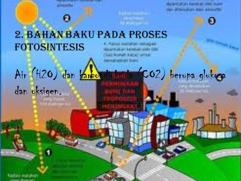 2. BAHAN BAKU PADA PROSES FOTOSINTESIS Air (H2O) dan karbondioksida (CO2) berupa glukosa dan oksigen.