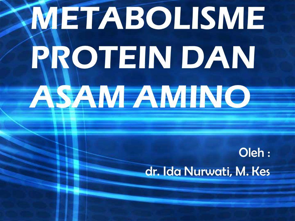 Proses pertukaran protein terjadi pada segala bentuk kehidupan Proses pd sel hidup terus menerus akan diperbarui melalui proses pertukaran protein : - sintesa - penguraian protein dan asam amino Hubungan kualitatif untuk proses pertukaran protein & a.amino protein tubuh Asam Amino Penggunaan kembali untuk sintesa protein yg baru 75-80 % (15 -28 g N / hr) Penguraian protein : 1-2 % protein tubuh total / hr ( 20 -35 g N / hr ) Katabolisme menj urea & kerangka C Untuk senyawa antara amfibolik ( 5 -7 g N / hr )