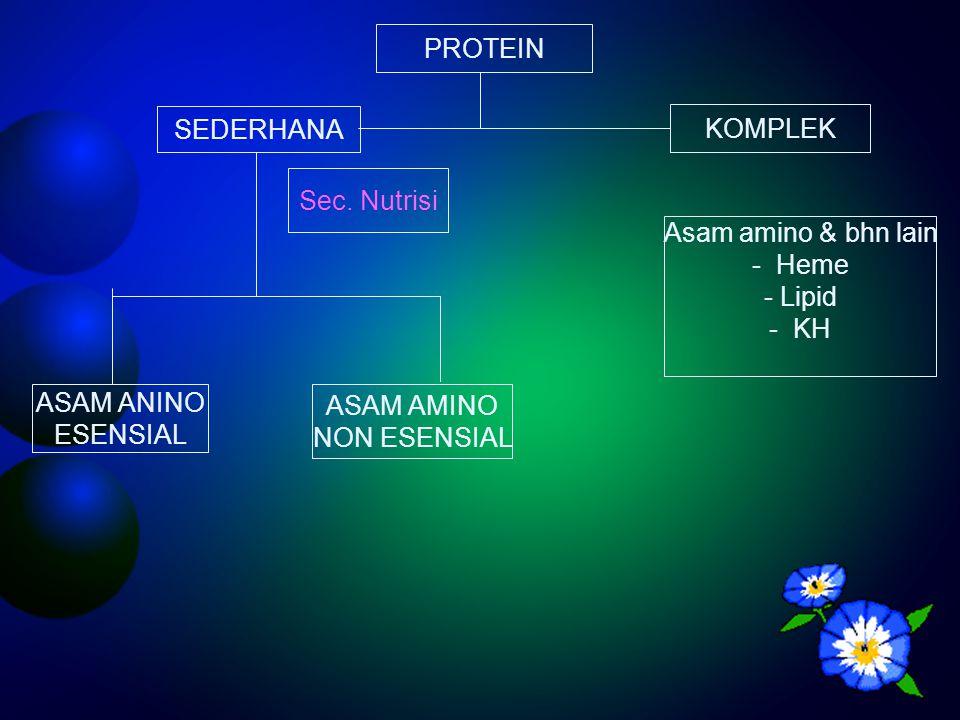 BIOSINTESA UREA DIBAGI 4 TAHAP Asam  Amino Asam  Keto transaminasi  Ketoglutarat L -glutamat UREA Deaminasi oksidatif NH3 Pengangkutan amonia Siklus Urea