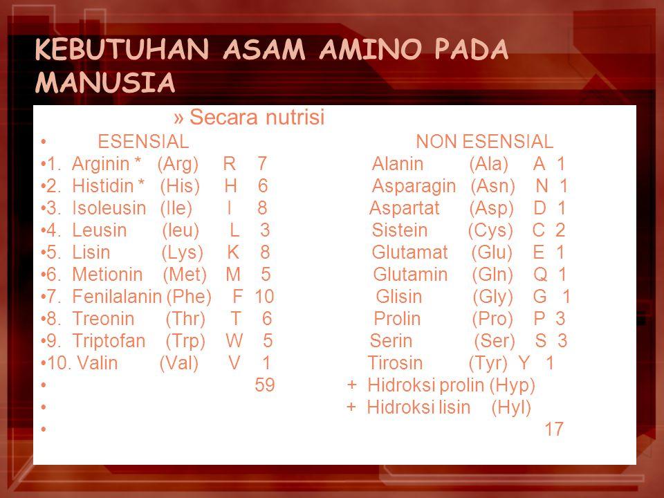 KEBUTUHAN ASAM AMINO PADA MANUSIA »S»Secara nutrisi ESENSIAL NON ESENSIAL 1.