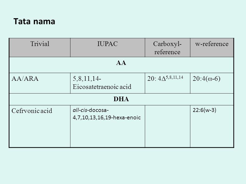 Struktur molekul AA DHA