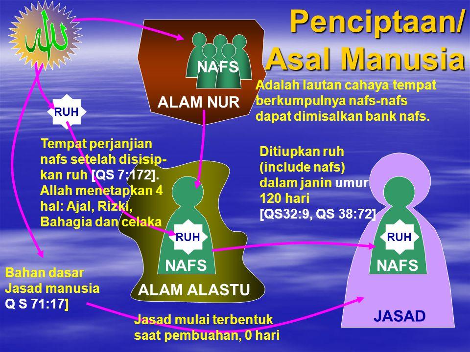 JASAD NAFS 1. Jasad 2. Nafs, atau jiwa 3. Ruh. Terdiri dari QALB RUH Mengenal Komponen Manusia