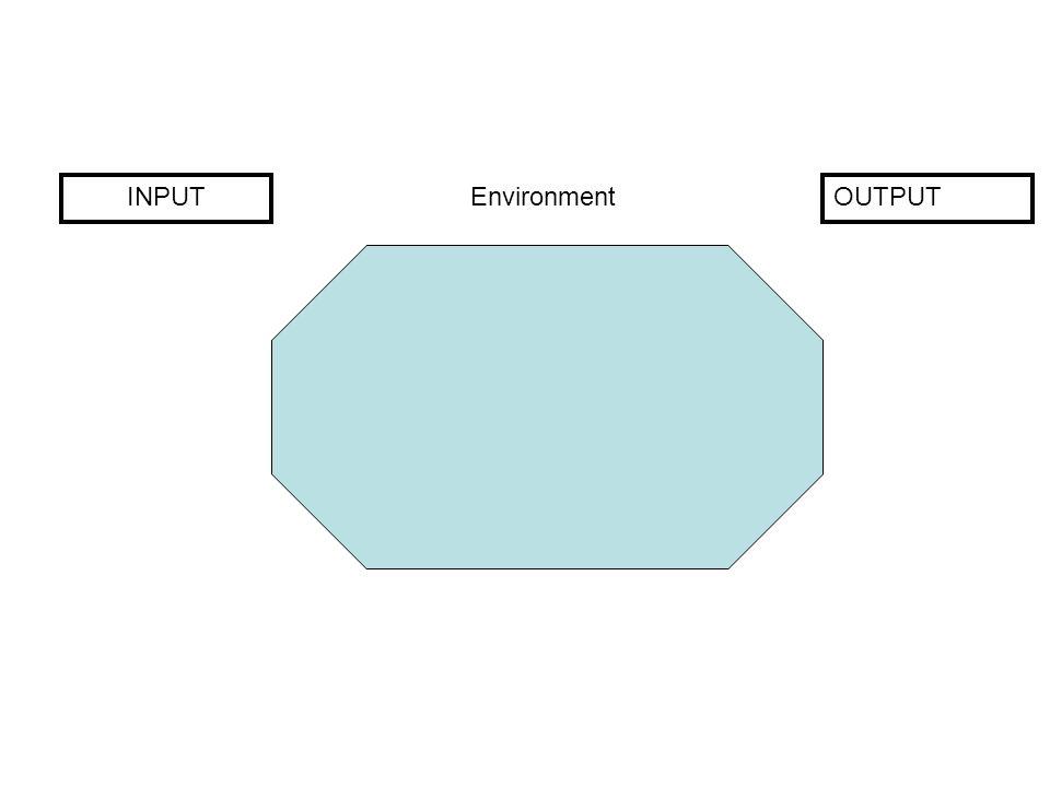 INPUTOUTPUT Environment