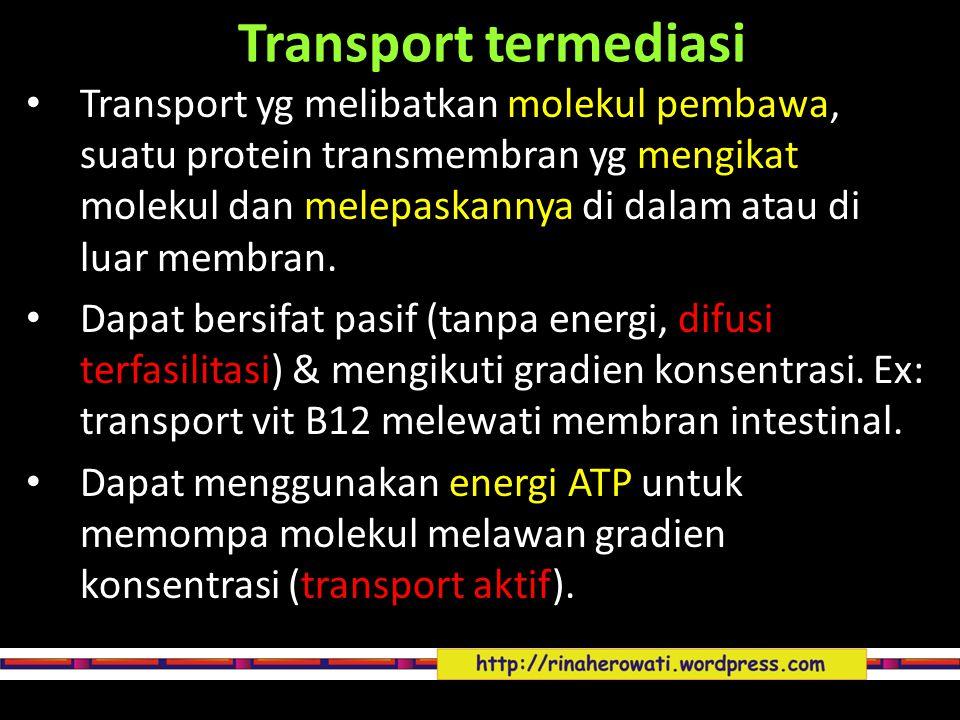 Transport termediasi Transport yg melibatkan molekul pembawa, suatu protein transmembran yg mengikat molekul dan melepaskannya di dalam atau di luar m