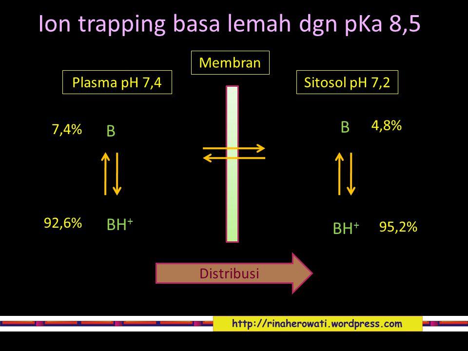 Ion trapping basa lemah dgn pKa 8,5 Membran Plasma pH 7,4Sitosol pH 7,2 Distribusi B B BH + 7,4% 92,6% 4,8% 95,2%