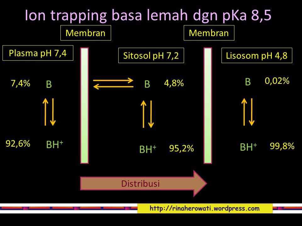 Ion trapping basa lemah dgn pKa 8,5 Membran Plasma pH 7,4 Sitosol pH 7,2 Distribusi B B BH + 7,4% 92,6% 0,02% 99,8% B BH + 4,8% 95,2% Membran Lisosom