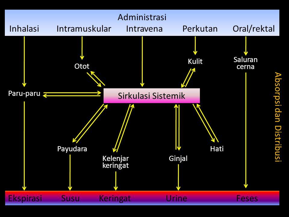 Administrasi Inhalasi Intramuskular Intravena Perkutan Oral/rektal Sirkulasi Sistemik Ekspirasi Susu Keringat Urine Feses Absorpsi dan Distribusi Paru