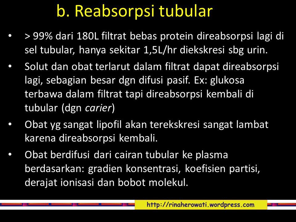 > 99% dari 180L filtrat bebas protein direabsorpsi lagi di sel tubular, hanya sekitar 1,5L/hr diekskresi sbg urin. Solut dan obat terlarut dalam filtr