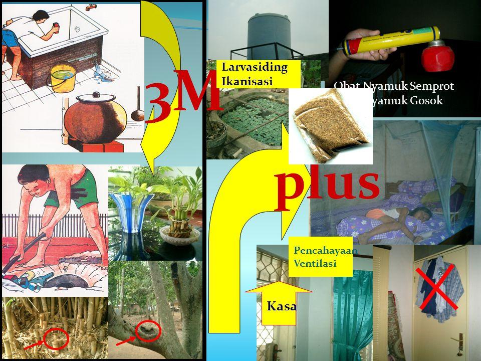 plus 3M Larvasiding Ikanisasi Obat Nyamuk Semprot Obat Nyamuk Gosok Pencahayaan Ventilasi Kasa