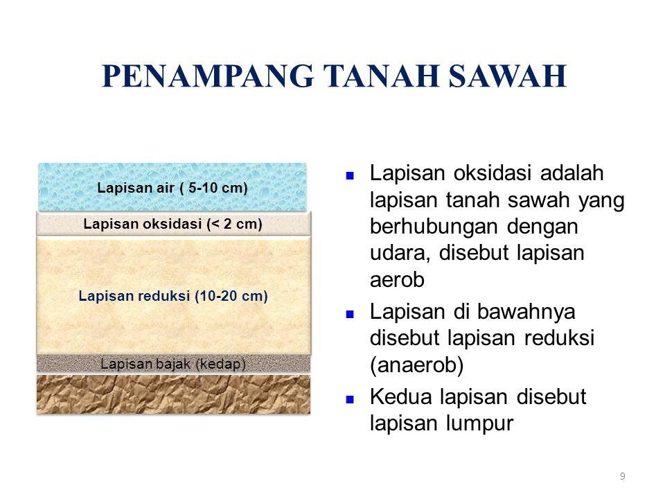 PENAMPANG TANAH SAWAH Lapisan oksidasi adalah lapisan tanah sawah yang berhubungan dengan udara, disebut lapisan aerob Lapisan di bawahnya disebut lapisan reduksi (anaerob) Kedua lapisan disebut lapisan lumpur Lapisan oksidasi (< 2 cm) Lapisan reduksi (10-20 cm) Lapisan bajak (kedap) Lapisan air ( 5-10 cm) 9