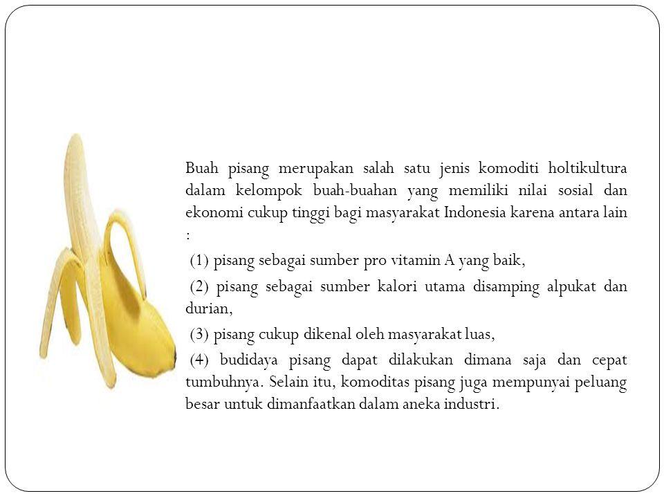 Buah pisang merupakan salah satu jenis komoditi holtikultura dalam kelompok buah-buahan yang memiliki nilai sosial dan ekonomi cukup tinggi bagi masya